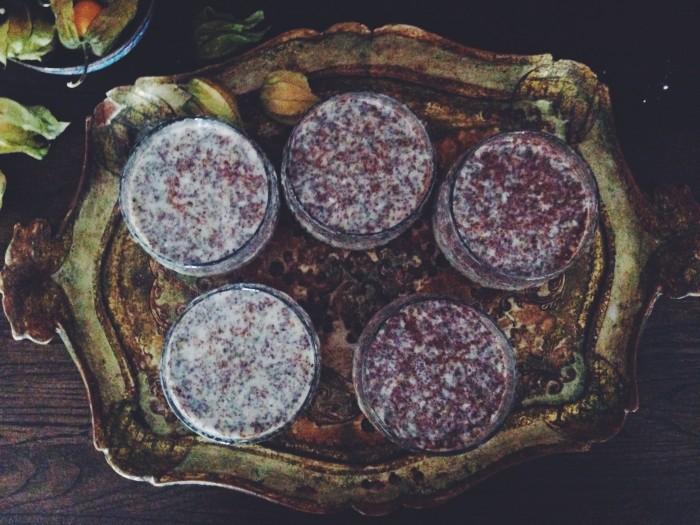Chiapudding recept sa gor du ingredienser 333