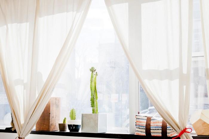 agnes_thor_julie_thevenot_curtains cactus inspiration pots