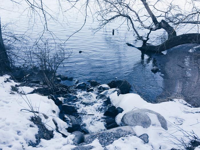 varflod-djurgarden-rosendal
