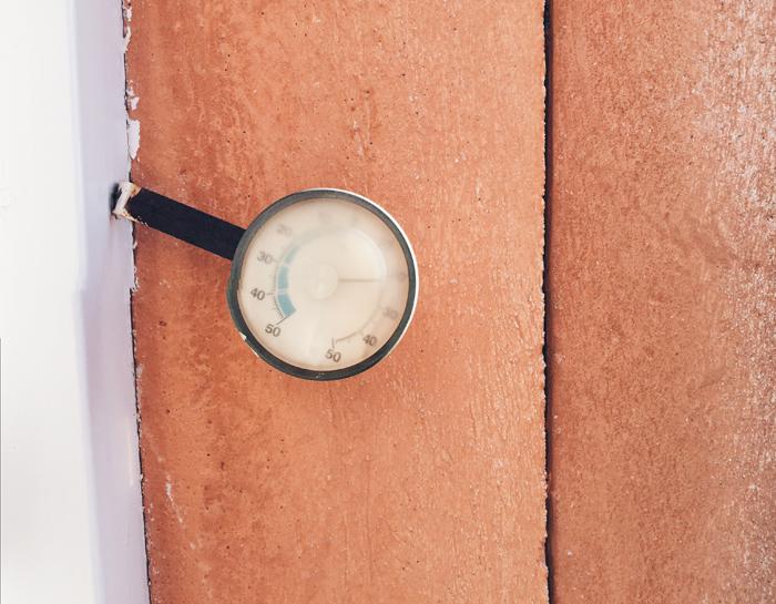 Den suddiga termometern stod på obeskrivliga 22 grader och på trädet mittemot skymtade de första knopparna.
