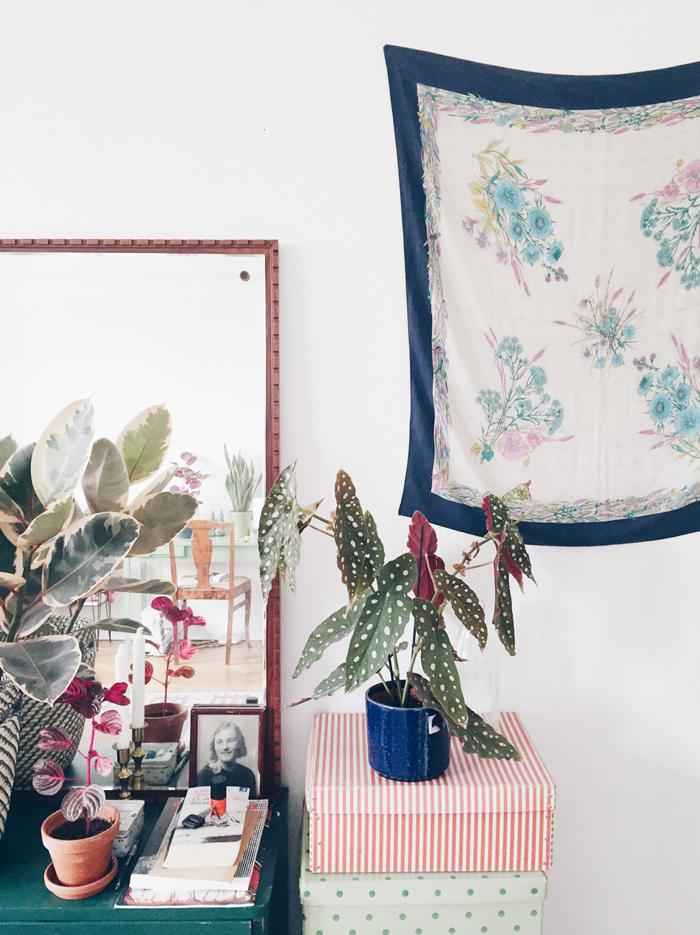 bohemisk-inredning-inspiration-vaxt-med-prickiga-blad-begonia-maculata-wighti