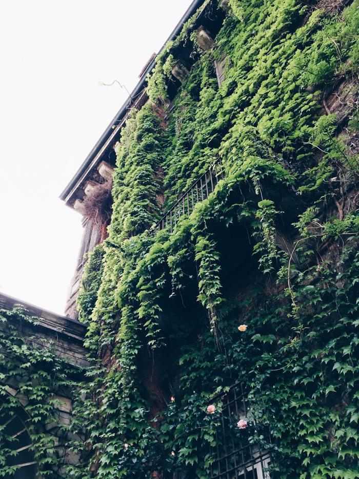 botanical-garden-brera-milan-2