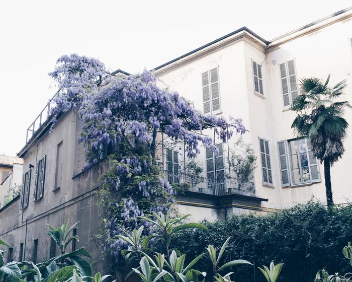 dream-balcony-wisteria-milan