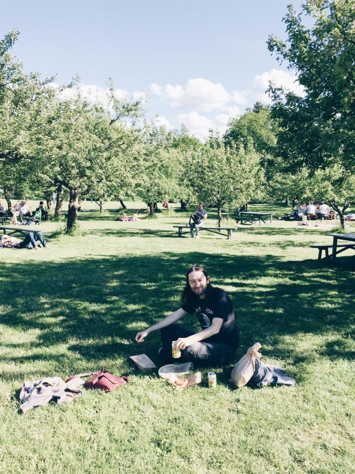 rosendals trädgårdar picknick